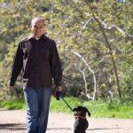 Nick walking a small back dog through a park